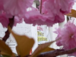 Theater Kirschblüten